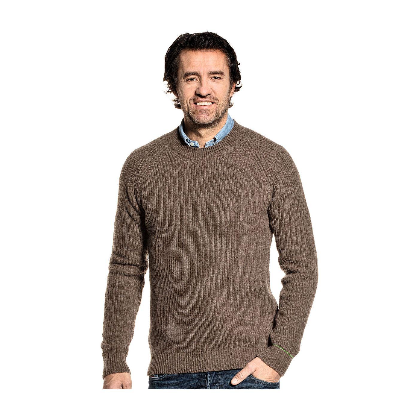 Gerecyclede trui voor mannen gemaakt van merinowol in het Bruin