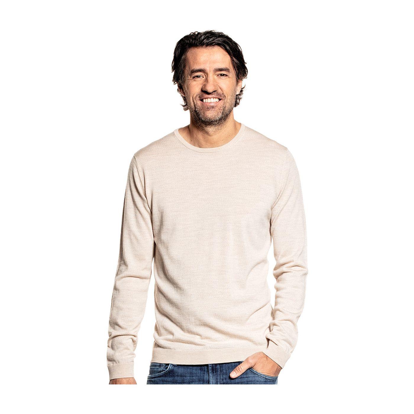 Crew neck sweater for men made of Merino wool in Beige